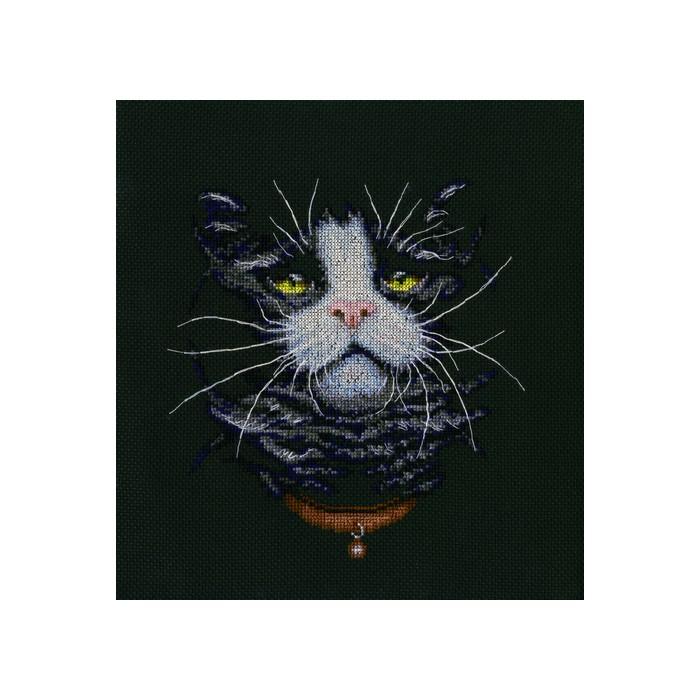 Набор для вышивания РТО Кошачий фаворитM576Мулине на карте, разобранное по цветам, канва Аида 14, черного цвета, символьная схема, игла, инструкция