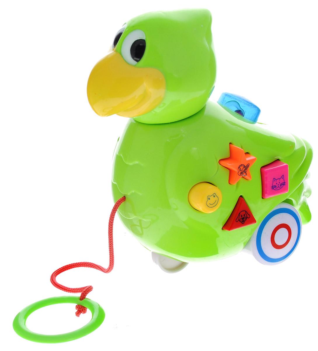 Mommy Love Игрушка-каталка Птичка211B_птичкаИгрушка-каталка Mommy Love Птичка обязательно понравится вашему малышу. Изделие выполнено из высококачественного пластика, экологически безопасного для ребенка, использованные красители не токсичны. Игрушка яркая, разноцветная, она обязательно заинтересует ребенка. Снабжена световыми и звуковыми эффектами. Игрушка выполнена в виде птички. Яркие разноцветные кнопочки различной формы на птичке обязательно заинтересуют малыша. Нажав на них, он услышит 4 звука, также есть возможность выбора мелодий. Такая игрушка будет подталкивать ребенка больше ходить, развивает мелкую моторику, координацию движений, а также цветовое и звуковое восприятие. Рекомендуется докупить 2 батарейки типа АА (товар комплектуется демонстрационными).
