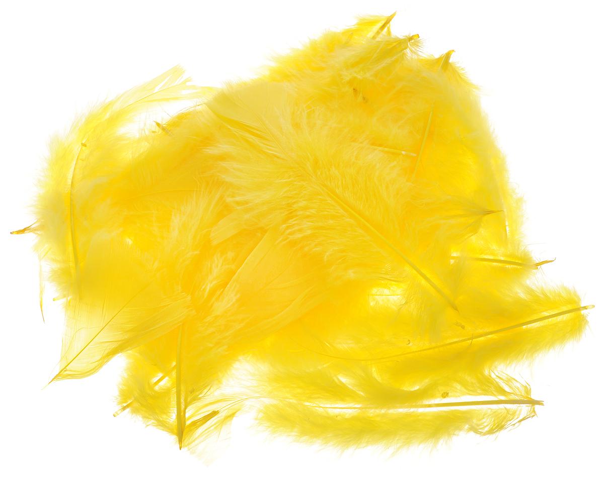 Набор для декорирования Home Queen Перья, 5 г69914Набор Home Queen Перья состоит из декоративных элементов, которые изготовлены из пера. Изделия можно использовать для украшения яиц, посуды, цветочных горшков, ваз и многого другого. Творчество способно приносить массу приятных эмоций не только человеку, который этим занимается, но и его близким, друзьям, родным. Набор Home Queen Перья красиво дополнит интерьер и создаст теплую весеннюю атмосферу. Отлично подойдет для декора дома к Пасхе. Средний размер элемента: 14,5 х 4,5 см
