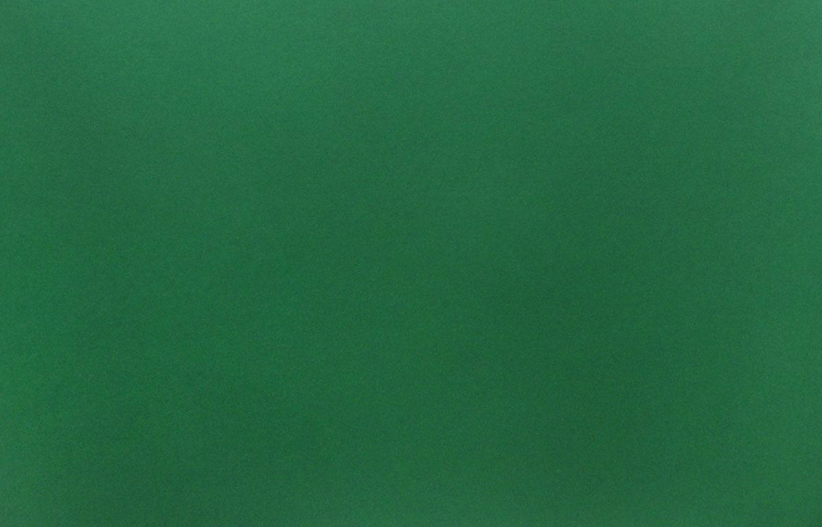 Herlitz Картон тонированный 50 см х 70 см цвет темно-зеленый0227173Цветной тонированный картон Herlitz позволит вам и вашему ребенку создавать всевозможные аппликации и поделки. Лист цветного двустороннего картона имеет плотность 300 г/м2. Размер листа - 50 см х 70 см. Холдинг Herlitz - это европейский лидер по производству офисных и школьных принадлежностей. Под брэндом Herlitz объединены высококачественные товары, предназначенные для организации рабочего места, письма, рисования, а также для оформления праздничных мероприятий. Создание поделок из картона поможет ребенку в развитии творческих способностей, кроме того, это увлекательный досуг.