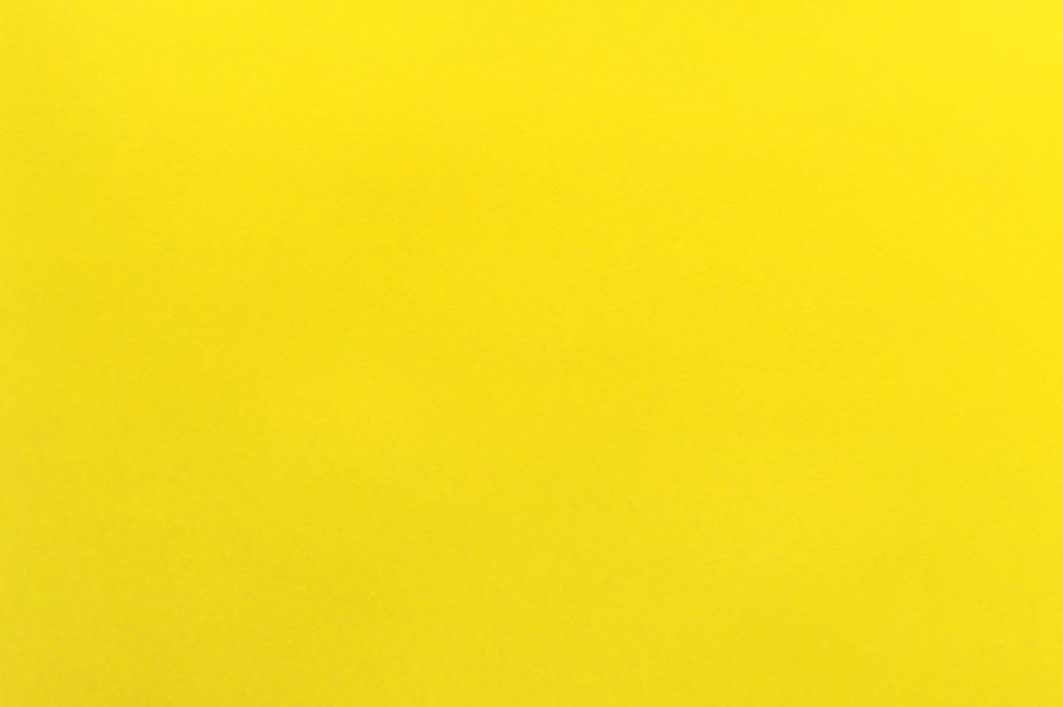 Herlitz Картон тонированный 50 см х 70 см цвет желтый0227256Цветной тонированный картон Herlitz позволит вам и вашему ребенку создавать всевозможные аппликации и поделки. Лист цветного двустороннего картона имеет плотность 300 г/м2. Размер листа - 50 см х 70 см. Холдинг Herlitz - это европейский лидер по производству офисных и школьных принадлежностей. Под брэндом Herlitz объединены высококачественные товары, предназначенные для организации рабочего места, письма, рисования, а также для оформления праздничных мероприятий. Создание поделок из картона поможет ребенку в развитии творческих способностей, кроме того, это увлекательный досуг.