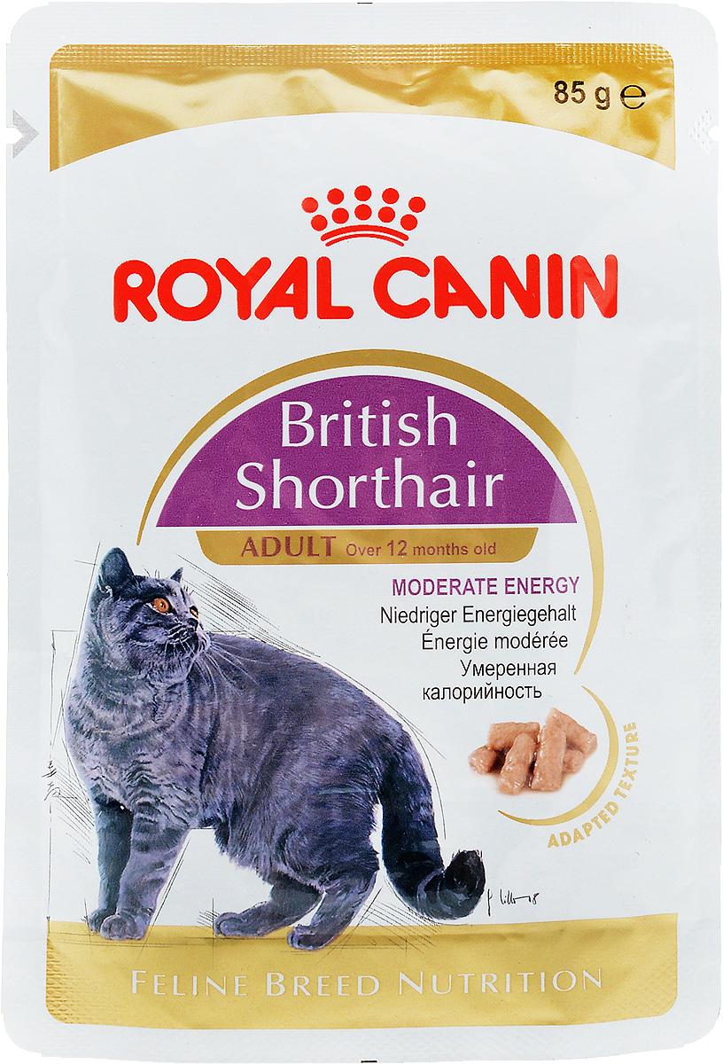Консервы Royal Canin British Shorthair Adult, для кошек британской породы в возрасте старше 12 месяцев, мелкие кусочки в соусе, 85 г60581Консервы Royal Canin  British Shorthair Adult специально созданы для британских короткошерстных кошек в возрасте старше 12 месяцев. Британская короткошерстная кошка родом из Великобритании, что явствует из названия породы. Поддержание оптимальной формы. Мощные и коренастые, британские короткошерстные кошки испытывают повышенную нагрузку на суставы в сравнении с кошками меньшего веса. Крупное сердце - риск для здоровья. Эта порода имеет предрасположенность к сердечным заболеваниям. Соблюдение диетических рекомендаций - залог здоровья сердца! Умеренное содержание энергии. У британской короткошерстной кошки мощное плотное телосложение, вследствие чего повышается нагрузка на суставы. Продукт British Shorthair Adult с адаптированным содержанием жира для поддержания оптимального веса. Здоровье мочевыделительной системы. Помогает поддерживать здоровье мочевыделительной системы. Здоровье кожи и шерсти. Помогает поддерживать здоровье кожи и...