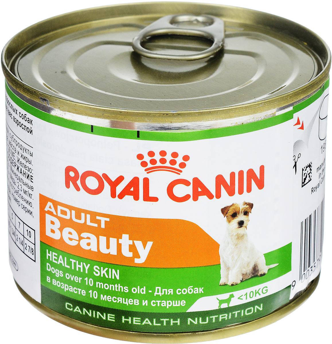 Консервы Royal Canin Adult Beauty, для собак в возрасте 10 месяцев и старше, 195 г49335Консервы Royal Canin Adult Beauty создан специально для взрослых собак с 10 месяцев и старше, весом до 10 кг. Предназначен для поддержания здоровья шерсти и кожи. Формула Beauty обогащена жирными кислотами и содержит специальный защитный комплекс. Состав: мясо и мясные субпродукты, злаки, субпродукты растительного происхождения, минеральные вещества, масла и жиры. Гарантированный анализ: белки - 9,6 %, жиры - 6,4 %, минеральные вещества - 2 %, клетчатка пищевая - 2 %, влажность - 74 %, медь - 2,3 мг/кг. Добавки (в 1 кг): витамин D3: 128 ME, железо - 15 мг, йод - 0,25 мг, марганец - 4,4 мг, цинк - 43 мг. Товар сертифицирован.