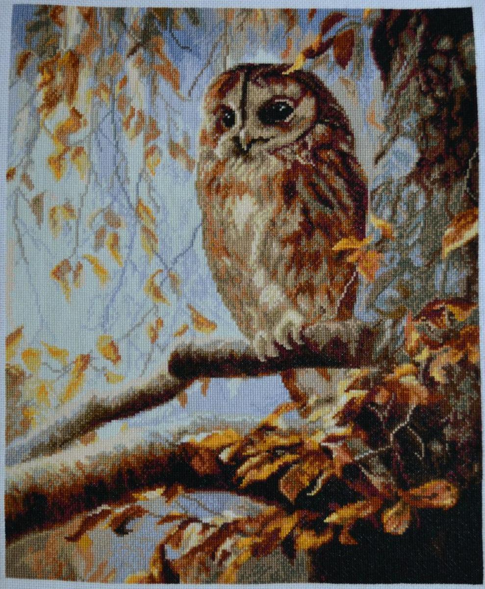 Набор для изготовления картины со стразами Паутинка Хозяйка леса, 37 х 48 см486947Состав набора: мозаика — 25 цветов, холст с нанесенным рисунком и клеевым слоем, пинцет, подробная инструкция.