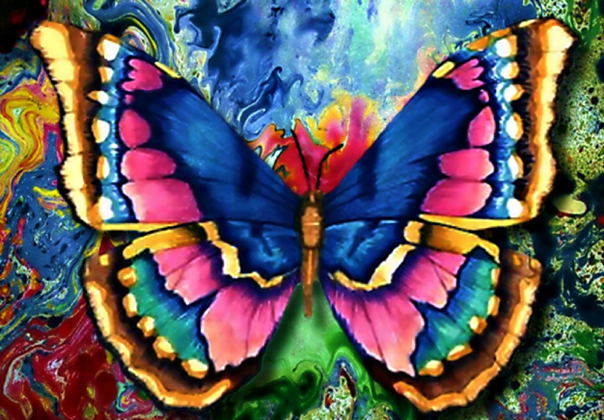 Набор для изготовления картины со стразами Алмазная Живопись Рисунок бабочки, 40 х 30 см494477В состав набора входит: полотно-схема с клеевым слоем, с условными обозначениями, инструкция, пластиковое блюдце, пинцет, упакованные стразы.