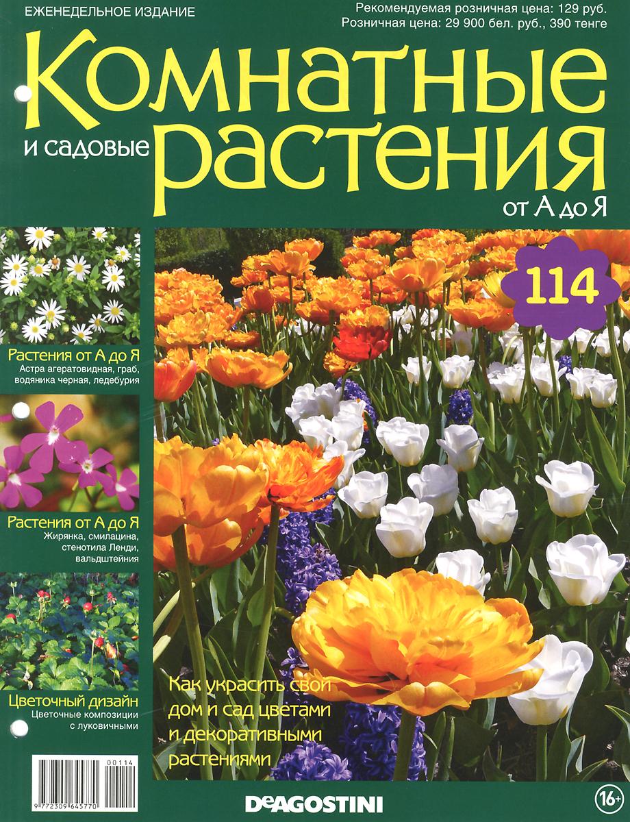 Журнал Комнатные и садовые растения. От А до Я №114VRD114Хотите сделать приятный и полезный подарок людям, увлекающимся цветоводством, или углубить собственные познания в этой сфере? Коллекция журналов Комнатные и садовые растения. От А до Я поможет вам в этом. Из журнала вы узнаете, как украсить свой дом и сад цветами и декоративными растениями. Категория 16+.