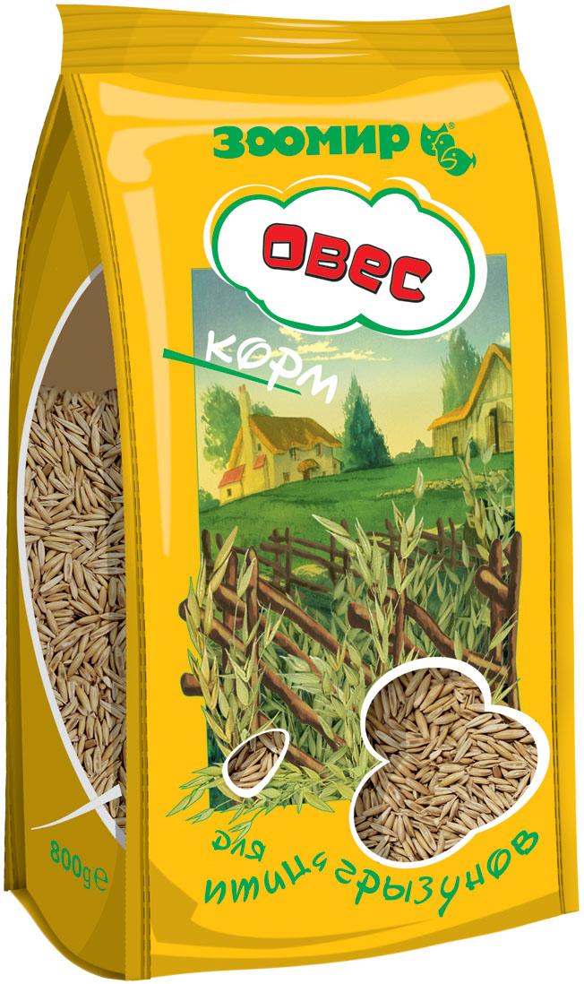 Корм для птиц и грызунов Зоомир Овес, 500 г4605Традиционный вид корма для большинства декоративных зерноядных птиц и грызунов. Является основой для составления различных питательных зерновых смесей. Отличается высоким содержанием белка и таких незаменимых аминокислот, как лизин, триптофан, метионин, а также витаминов группы В. Состав: семена овса.