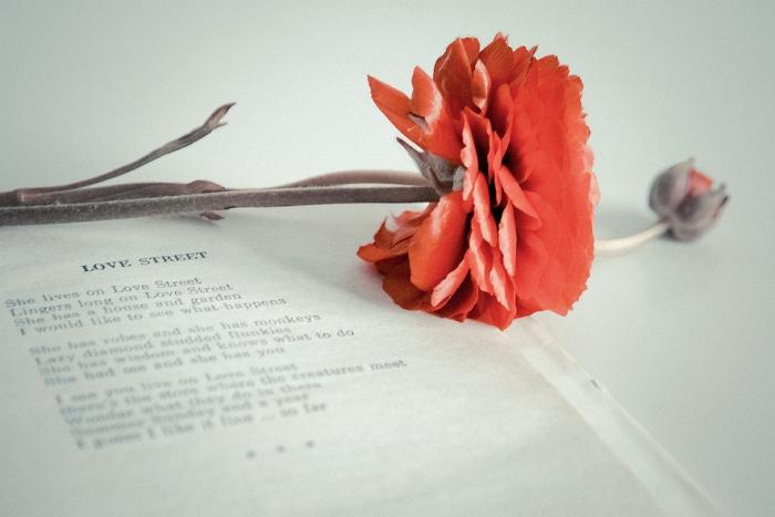 Открытка Love street. Автор Вероника ДорофееваDN10-007Оригинальная дизайнерская открытка «Love street» выполнена из плотного матового картона. На лицевой стороне расположена репродукция фото-работы Вероники Дорофеевой с цветком и книгой. Такая открытка станет великолепным дополнением к подарку или оригинальным почтовым посланием, которое, несомненно, удивит получателя своим дизайном и подарит приятные воспоминания.