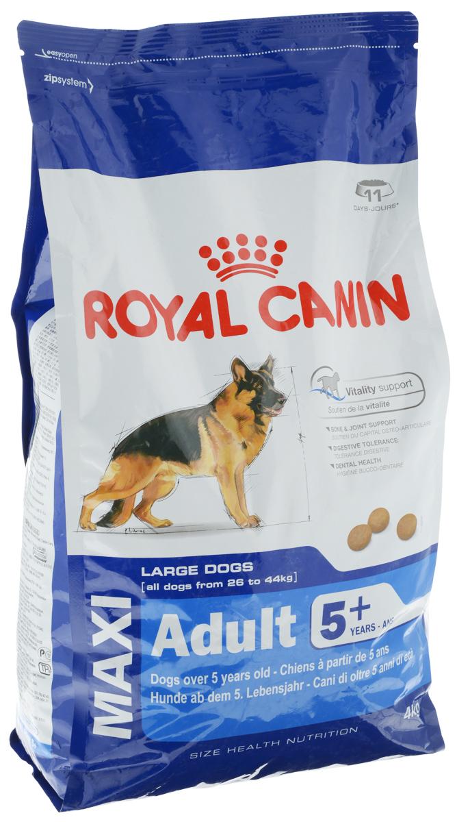 Корм сухой Royal Canin Maxi Adult 5+, для собак весом от 26 кг до 44 кг старше 5 лет, 4 кг00598Полнорационный сухой корм Royal Canin Maxi Adult 5+ для взрослых собак крупных размеров (вес собаки от 26 до 44 кг) старше 5 лет. Особенности корма: Поддержание жизненной энергии: адаптированное содержание питательных веществ помогает сохранять нормальное функционирование организма у собак крупных пород, проявляющих первые признаки старения. Содержит специальный комплекс антиоксидантов, способствующий нейтрализации свободных радикалов. Поддержка костей и суставов: поддерживает здоровье костей и суставов у собак крупных пород при повышенных нагрузках. Пищевая переносимость: повышенная усваиваемость рациона достигается благодаря особой рецептуре с очень высоким качеством белков и сбалансированным содержанием пищевых волокон. Здоровье зубов: сокращает образование зубного налета благодаря хелатам кальция. Состав: дегидратированные белки животного происхождения (птица), рис, животные жиры, пшеница, кукурузная мука,...