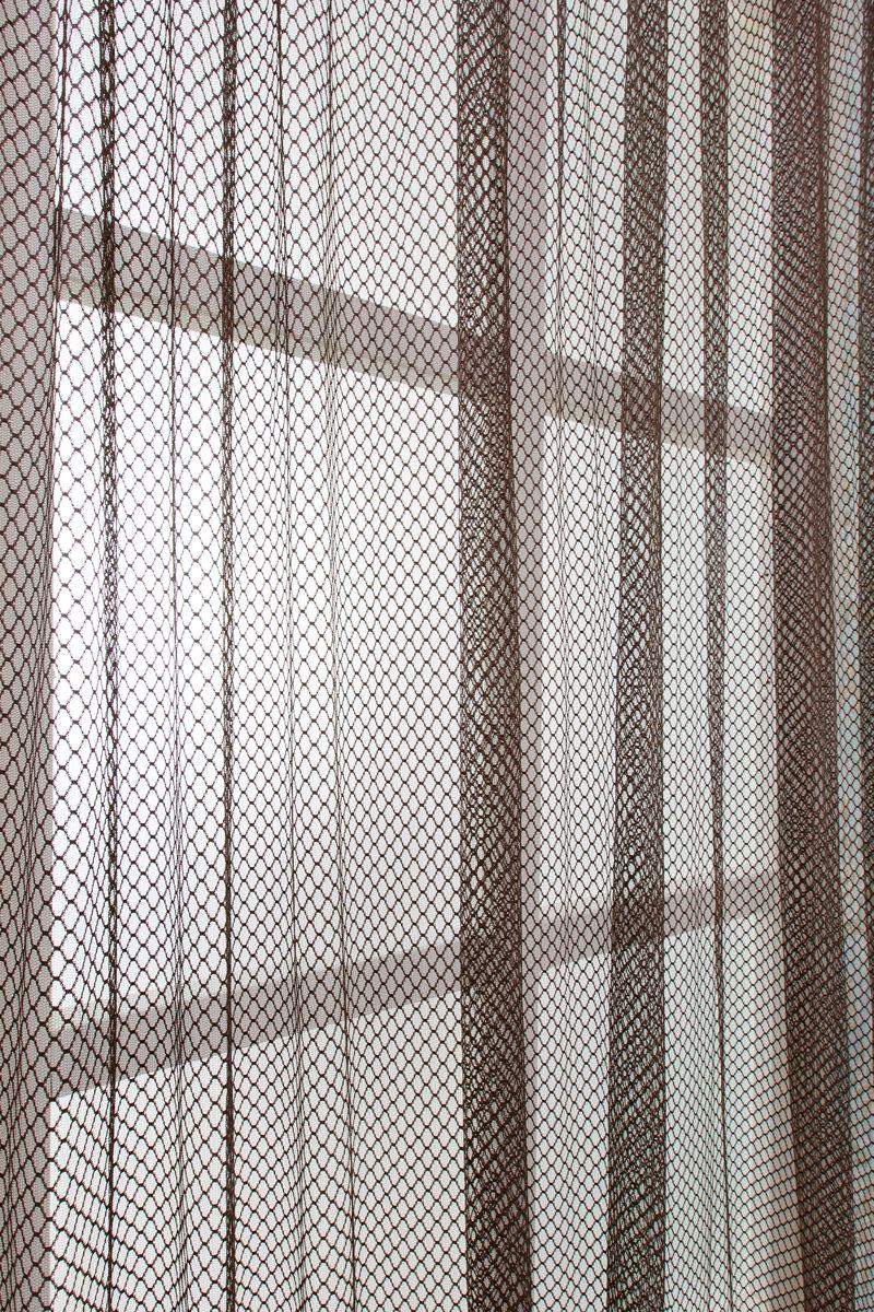 Тюль Daily by Togas Синай, на ленте, цвет: коричневый, 300х28050.19.74.0435Коричневый тюль СИНАЙ из коллекции Daily. Состав: 100% полиэстер. Комплектация: 1 полотно. Размер: 300х280. Цвет: коричневый. Уход: необходимо стирать при температуре 40°С с использованием моющих средств для деликатных тканей. Сушить на специальной сушке или развесив на окне. Тюль из полиэстера гладить не обязательно, но если такое желание возникнет, следует выбрать деликатный режим работы утюга (не более 150°С) и воспользоваться подутюжильником. Не отбеливать.