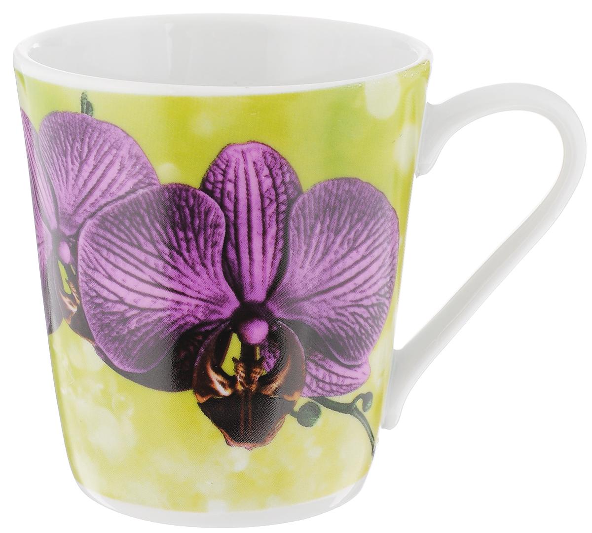 Кружка Классик. Орхидея, цвет: зеленый, фиолетовый, 300 мл3С0493Кружка Классик. Орхидея изготовлена из высококачественного фарфора. Изделие оформлено красочным цветочным рисунком и покрыто превосходной сверкающей глазурью. Изысканная кружка прекрасно оформит стол к чаепитию и станет его неизменным атрибутом. Диаметр кружки (по верхнему краю): 8,5 см. Высота стенок: 9,5 см.