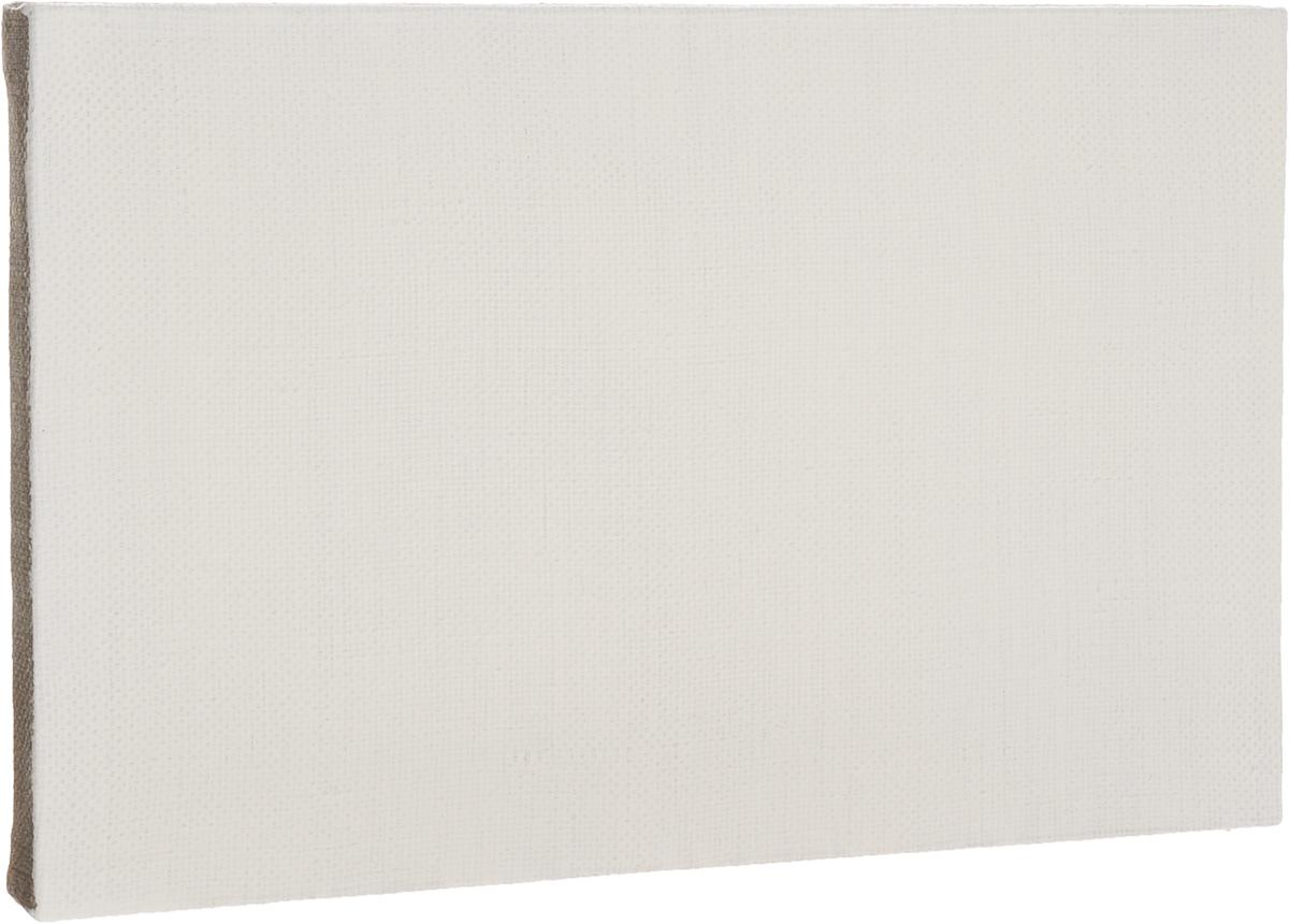 Холст ArtQuaDram Репинский на подрамнике, грунтованный, 25 х 40 смТ0003909Холст на деревянном подрамнике ArtQuaDram Репинский изготовлен из 100% натурального льна. Подходит для профессионалов и художников. Холст не трескается, не впитывает слишком много краски, цвет краски и качество не изменяются. Холст идеально подходит для масляной и акриловой живописи.