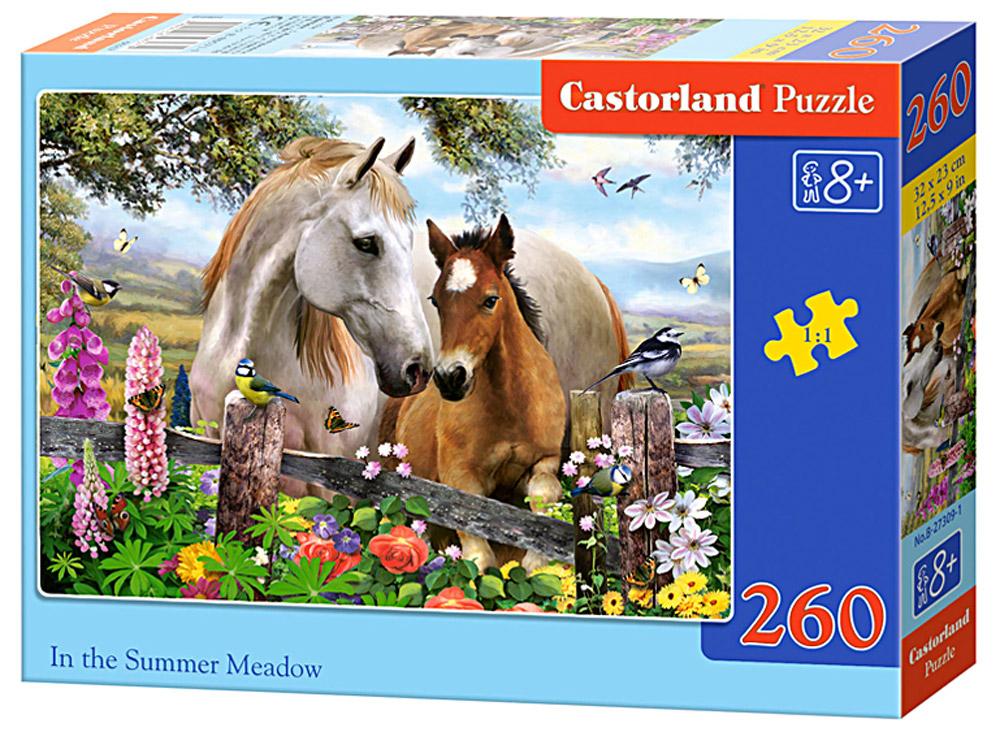 Castorland Пазл ЛошадиB-27309Пазлы Castorland это - высокий уровень полиграфии, четкие и красочные цвета, продуманные иллюстрации, уникальность формы каждой детали, разнообразие тематик