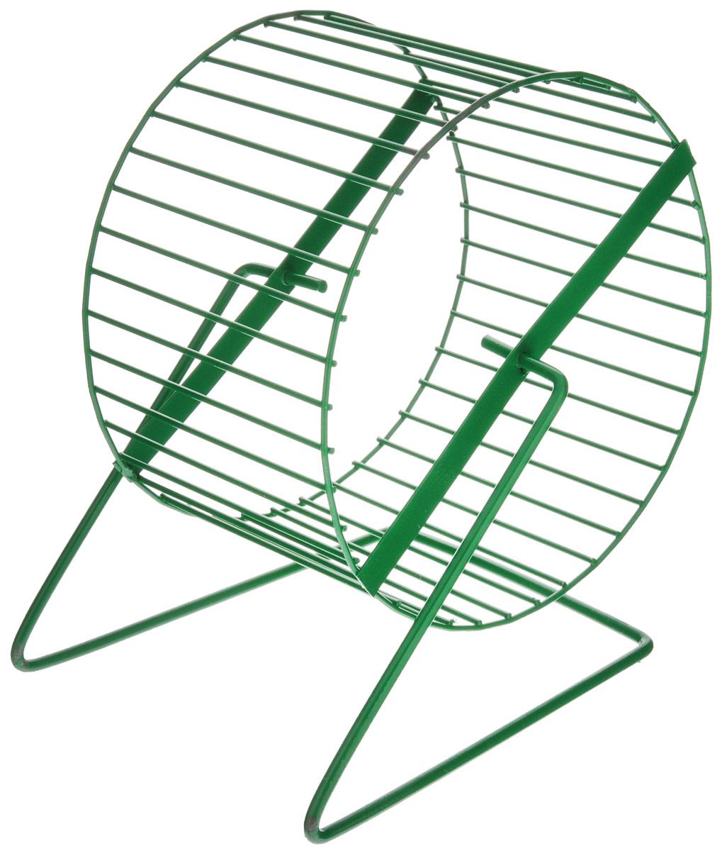 Колесо для грызунов ЗооМарк, цвет: зеленый, диаметр 16 смD -16Колесо для грызунов ЗооМарк, выполненное из прочного металла, очень удобное и бесшумное. Поместив его в клетку, вы обеспечите своему питомцу необходимую физическую активность. Предназначено для хомяков и мышей. Диаметр колеса: 16 см. Высота колеса: 18 см.