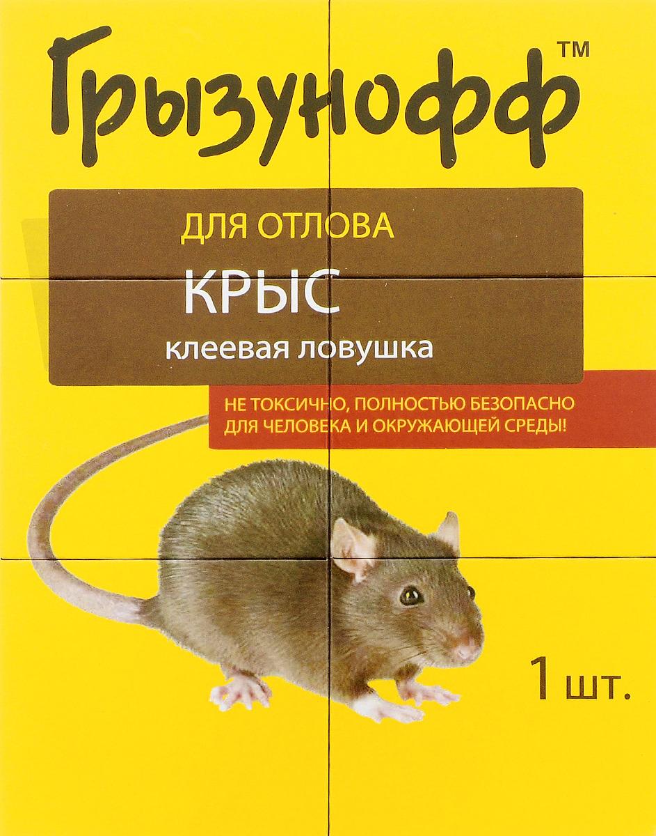 Ловушка клеевая Грызунофф, для крысGR15020031Ловушка Грызунофф предназначена для уничтожения серых и черных крыс, домовых мышей, песчанок, рыжих полевок и кротов. Это эффективное средство инсектицидное и родентицидное Капкан-клей, представленное в виде готовой ловушки для отлова на липкую поверхность. Состав: клеевая основа, включающая канифоль, каучук и минеральные масла, нанесенная на подложку. Не содержит токсического вещества. Товар сертифицирован.