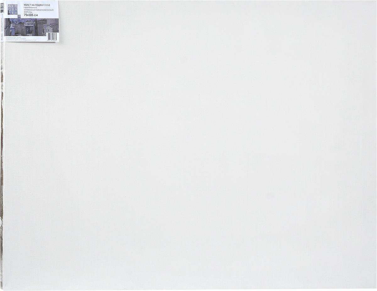Холст ArtQuaDram Живописный на подрамнике, среднезернистый, грунтованный, 75 х 105 смТ0005809Холст на деревянном подрамнике ArtQuaDram Живописный изготовлен из 100% натурального льна. Подходит для профессионалов и художников. Холст не трескается, не впитывает слишком много краски, цвет краски и качество не изменяются. Холст идеально подходит для масляной и акриловой живописи.