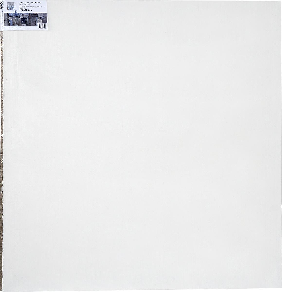 Холст ArtQuaDram Живописный на подрамнике, среднезернистый, грунтованный, 100 х 100 смТ0003768Холст на деревянном подрамнике ArtQuaDram Живописный изготовлен из 100% натурального льна. Подходит для профессионалов и художников. Холст не трескается, не впитывает слишком много краски, цвет краски и качество не изменяются. Холст идеально подходит для масляной и акриловой живописи.