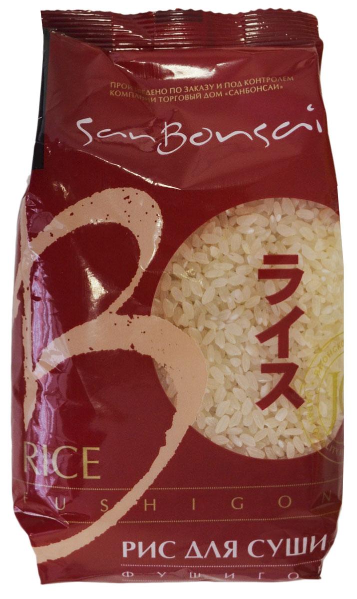 SanBonsai Fushigon рис для суши, 450 г8271В странах Юго-Восточной Азии и Китае рис является национальным продуктом питания. Основой сорт риса, который там выращивают и потребляют - фушигон. Особенность его приготовления заключается в том, что рис варят на пустой воде без добавления соли, специй или масла. И только при подаче на стол или готовке блюда с использованием риса, добавляют различные соусы на основе сои и, как правило, кунжут. Как сложный углевод, рис дает большое количество энергии на долгий промежуток времени. Рис для суши SanBonsai Fushigon Экстра сорта фушигон отличается повышенной клейкостью в вареном виде, что позволяет с легкостью придать ему желаемую форму. Фушигон используют не только для приготовления роллов и суши, но и для всех блюд Юго-Восточной Азии и Китая.