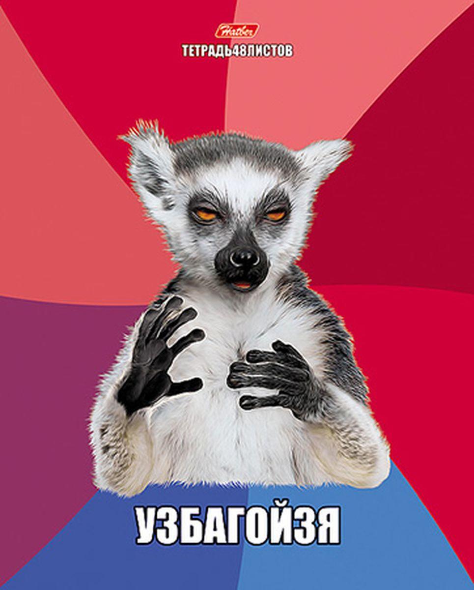 Hatber Тетрадь 48л А5 клетка ПРИКОЛЫ 25