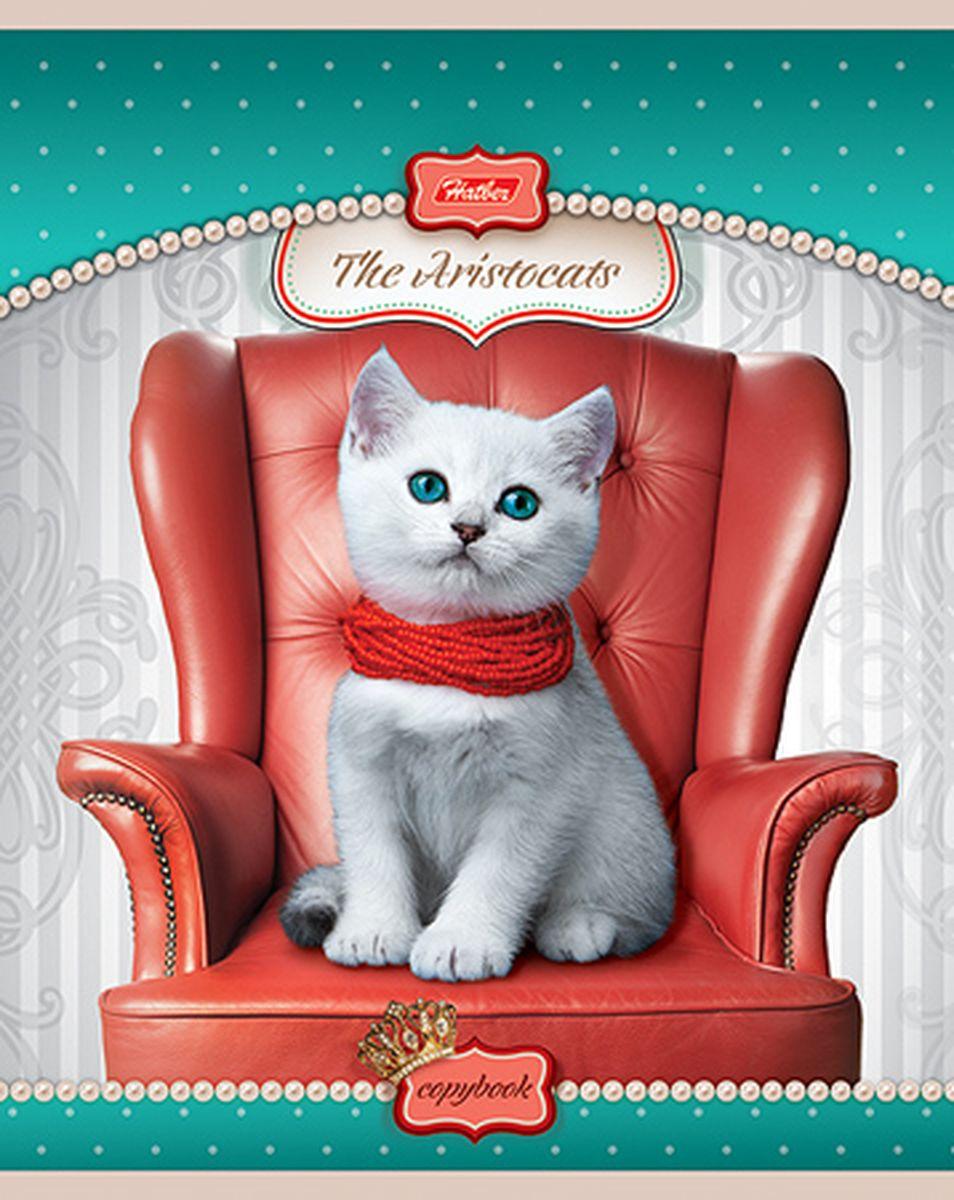 Hatber Тетрадь Коты-аристократы 48 листов в клетку цвет бирюзовый светло-серый