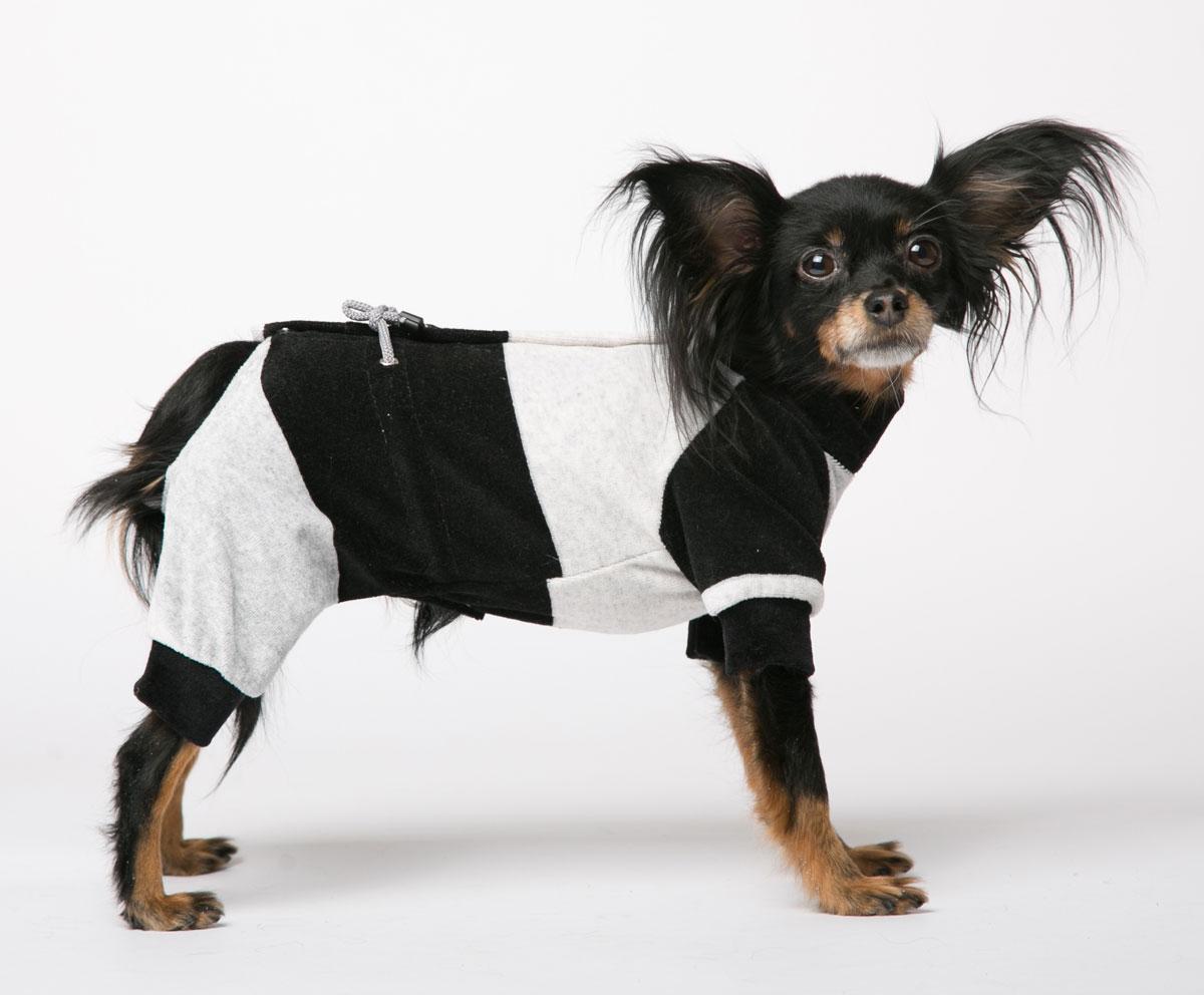 Комбинезон для собак Yoriki Велюр, для мальчика, цвет: черный, серый. Размер S338-11Комбинезон для собак Yoriki Велюр отлично подойдет для прогулок в прохладную погоду. Застегивается комбинезон на спине на кнопки и дополнительно затягивается на талии шнурком. Благодаря такому комбинезону вашему питомцу будет комфортно наслаждаться прогулкой. Обхват шеи: 20-24 см. Длина по спинке: 21 см. Объем груди: 29-36 см.