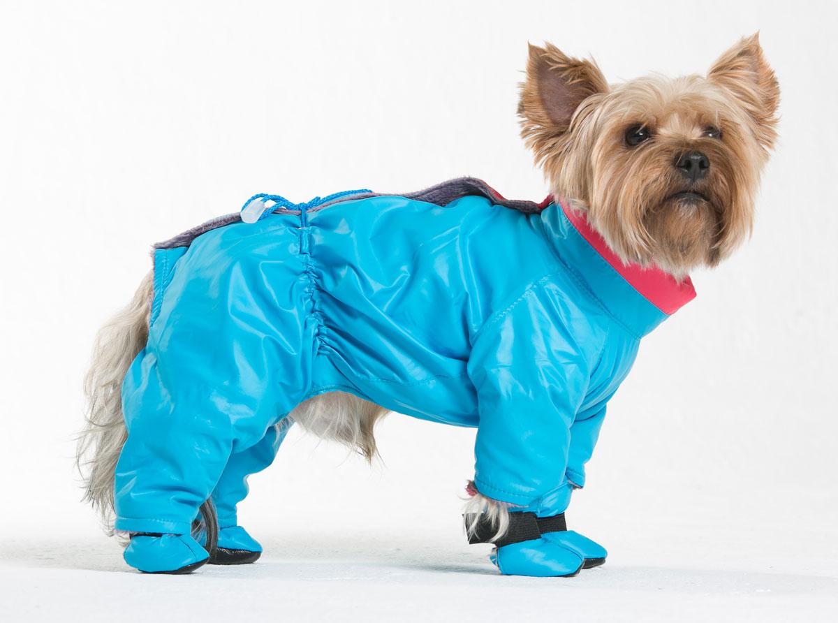 Комбинезон для собак Yoriki Флирт, для мальчика, цвет: голубой. Размер L211-13Комбинезон для собак Yoriki Флирт отлично подойдет для прогулок в прохладную погоду осенью или весной. Верх комбинезона выполнен из водоотталкивающего полиэстера. Подкладка изготовлена из искусственного меха. Застегивается комбинезон на спине на кнопки и дополнительно на пояснице затягивается шнурком. Благодаря такому комбинезону вашему питомцу будет комфортно наслаждаться прогулкой. Обхват шеи: 27-31 см. Длина по спинке: 29 см. Объем груди: 41-47 см.