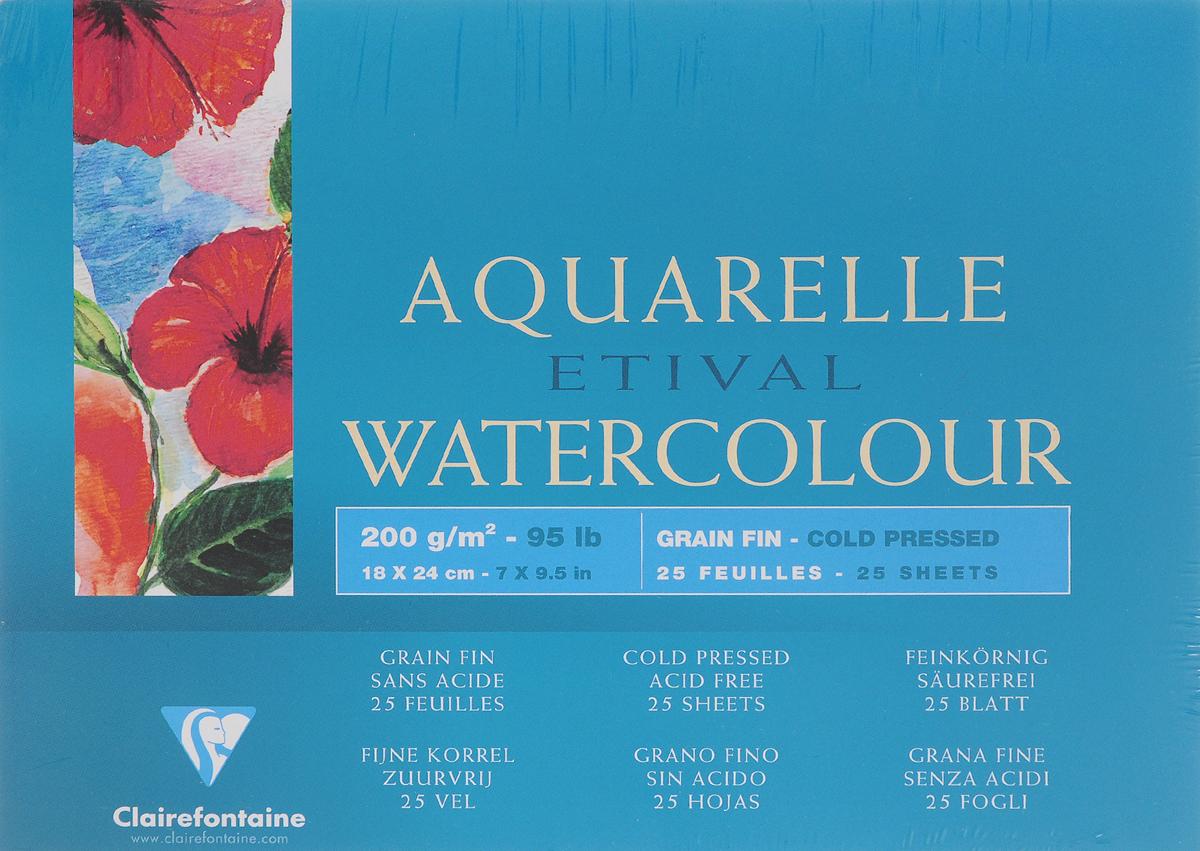 Альбом для акварели Clairefontaine Etival, 18 х 24 см, 25 листов96453Альбом Clairefontaine Etival состоит из 25 листов высококачественной бумаги белого цвета с зернистой поверхностью. Бумага изготовлена из 100% целлюлозы без применения кислот и предназначена для рисования всеми видами водорастворимых красок. Она прекрасно впитывает влагу, что является необходимым условием для работы с акварелью. Обложка выполнена из мелованного картона с клеевым креплением. Склейка произведена таким образом, что листы можно изымать без разрушения блока. Твердая подложка позволяет использовать альбом вне класса или дома.