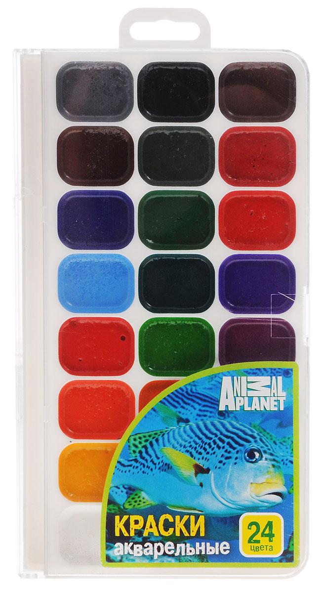 Action! Акварель медовая Animal Planet 24 цветаAP-WP18/2 24 цв_новый дизайнАкварель Action! Animal Planet предназначена для детского творчества и различных художественных работ. Краски имеют яркие насыщенные цвета, легко наносятся, быстро сохнут и безвредны для здоровья ребенка. Акварель изготовлена на основе органических пигментов с добавлением патоки. Комплект включает в себя акварельные краски 24-х цветов.
