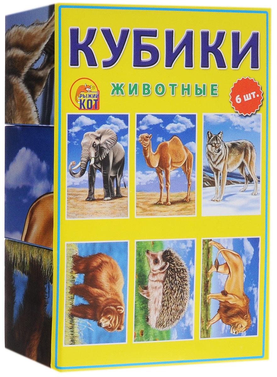 Рыжий Кот Кубики Животные 6 штК06-6936Кубики Рыжий Кот Животные непременно заинтересуют вашего малыша и подарят ему много положительных эмоций. В набор входят 6 кубиков, собрав которые, ваш ребенок получит красочные картинки различных животных - слона, верблюда, волка, медведя, ежа, льва. Складывая кубики в различном порядке, ребенок будет развивать моторику и память, а также познакомится с различными видами животных. Изделия выполнены из прочных материалов, полностью безопасных для здоровья вашей крохи.