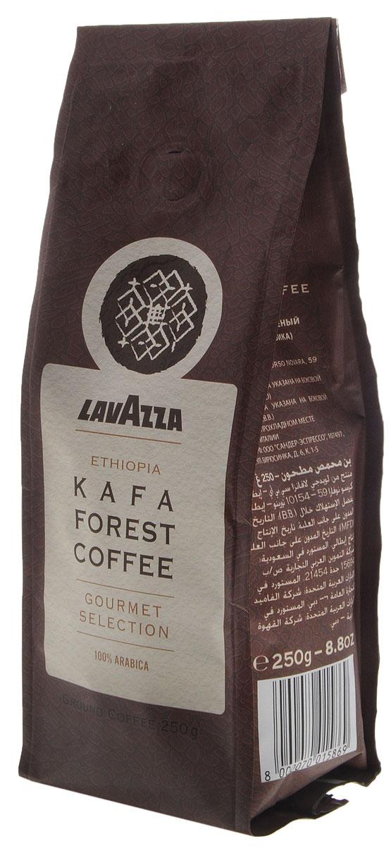 Lavazza Kafa Forest Coffee кофе молотый, 250 г8000070015869Высококачественный кофе Lavazza Kafa Forest Coffee обладает изысканным благородным вкусом и интенсивным ароматическим букетом. В его мягком послевкусии звучат сладкие нотки цветочного меда и спелых фиников. Рекомендуется для приготовления в эспрессо-машине, фильтр-кофеварке, турке.