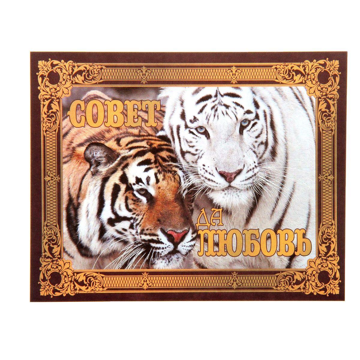 Наклейка на бутылку Sima-land Совет да любовь! Тигры, 9,4 х 11,7 см1162027Наклейка Sima-land Совет да любовь! Тигры, выполненная из бумаги, станет отличным аксессуаром, который преобразит обычную бутылку в праздничную и придаст вам особое настроение.