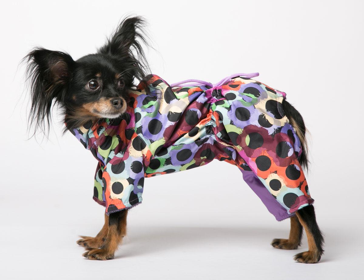 Комбинезон для собак Yoriki Маскарад, для девочки. Размер M347-22Комбинезон для собак Yoriki Маскарад отлично подойдет для прогулок в прохладную погоду осенью или весной. Верх комбинезона выполнен из водоотталкивающего полиэстера. Подкладка изготовлена из искусственного меха. Застегивается комбинезон на спине на кнопки и дополнительно на пояснице затягивается шнурком. Благодаря такому комбинезону вашему питомцу будет комфортно наслаждаться прогулкой. Обхват шеи: 23-28 см. Длина по спинке: 25 см. Объем груди: 35-42 см.
