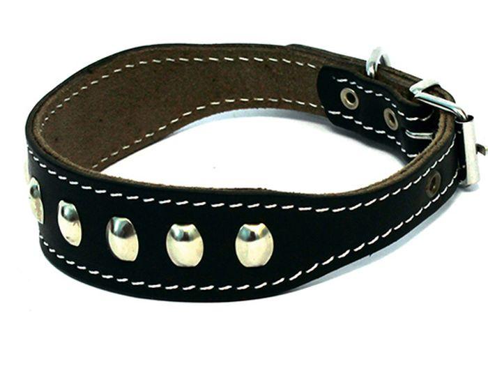 Ошейник для собак Каскад, с синтепоном и украшением, для левретки/таксы, диаметр 25-32 см, цвет: черный00000035чОшейник кожаный черный для левретки таксы с украшением с синтепоном