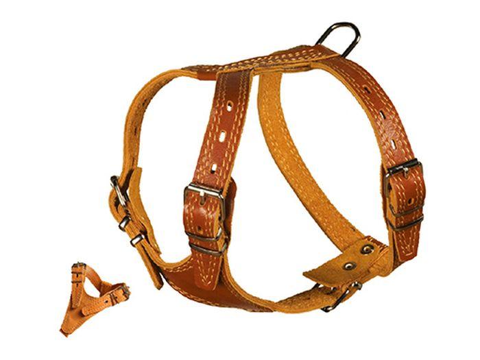 Шлейка для собак Каскад Элита, двойная, ширина 2 см, обхват груди 38-46 см01020001кШлейка Каскад Элита, изготовленная из и натуральной кожи, подходит для собак крупных и средних пород. Крепкие металлические элементы делают ее надежной и долговечной. Шлейка - это альтернатива ошейнику. Правильно подобранная шлейка не стесняет движения питомца, не натирает кожу, поэтому животное чувствует себя в ней уверенно и комфортно. Изделие отличается высоким качеством, удобством и универсальностью. Размер регулируется при помощи пряжек. Обхват шеи: 28-42 см. Обхват груди: 38-46 см. Ширина шлейки: 2 см.
