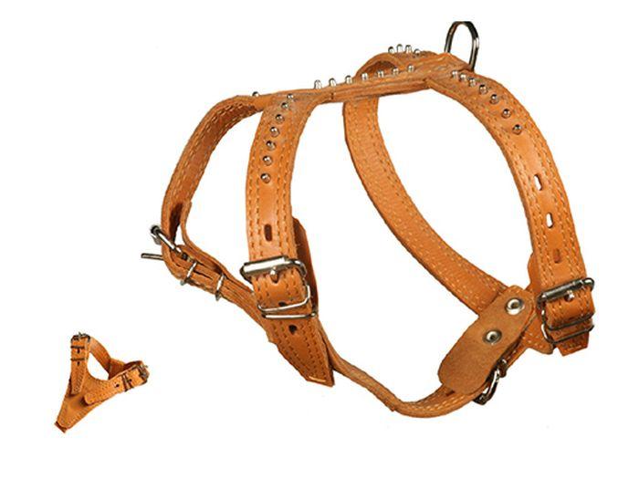 Шлейка Каскад Элита, двойная, с шипами-еж, ширина 2 см, цвет: коричневый01020005кШлейка кожаная Элита двойная с шипами-ёж шир.20 мм грудь 38-46 см шея 28-42 см