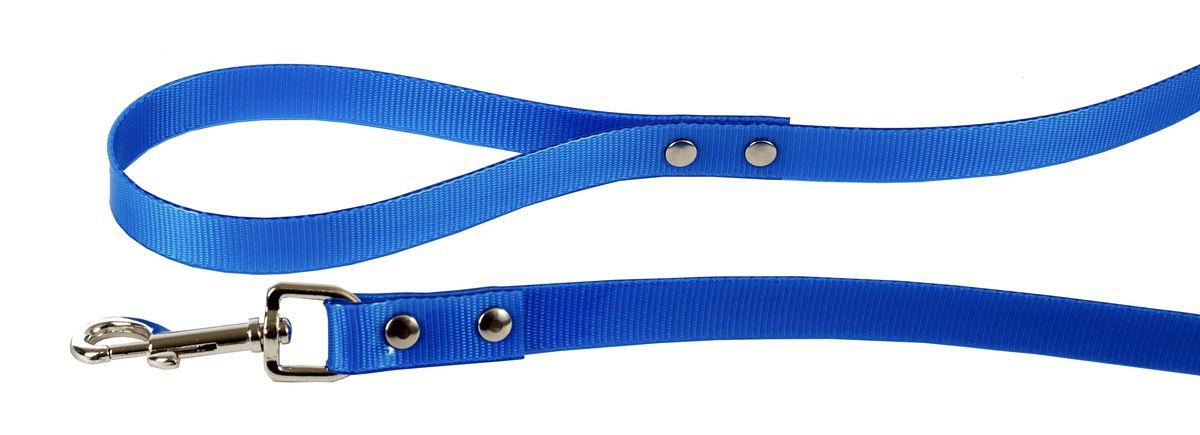 Поводок для собак Каскад Синтетик, цвет: синий, ширина 1,5 см, длина 2 м02615201-06Поводок для собак Каскад Синтетик изготовлен из высокотехнологичного биотана (нейлон, термопластичный полиуретан) и снабжен металлическим карабином. Поводок отличается не только исключительной надежностью и удобством, но и ярким дизайном. Он идеально подойдет для активных собак, для прогулок на природе и охоты. Поводок - необходимый аксессуар для собаки. Ведь в опасных ситуациях именно он способен спасти жизнь вашему любимому питомцу. Длина поводка: 2 м. Ширина поводка: 1,5 см.