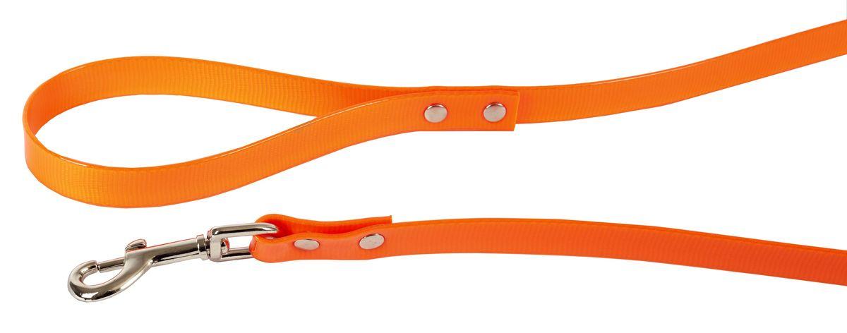 Поводок для собак Каскад Синтетик, цвет: оранжевый, ширина 2 см, длина 1,2 м02620121-03Поводок для собак Каскад Синтетик изготовлен из высокотехнологичного биотана (нейлон, термопластичный полиуретан) и снабжен металлическим карабином. Поводок отличается не только исключительной надежностью и удобством, но и ярким дизайном. Он идеально подойдет для активных собак, для прогулок на природе и охоты. Поводок - необходимый аксессуар для собаки. Ведь в опасных ситуациях именно он способен спасти жизнь вашему любимому питомцу. Длина поводка: 1,2 м. Ширина поводка: 2 см.