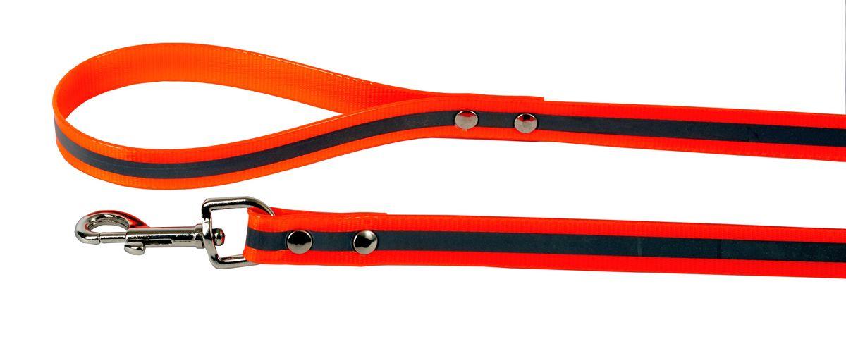 Поводок для собак Каскад Синтетик, со светоотражающей полосой, цвет: оранжевый, ширина 2 см, длина 2 м02620202-03Поводок для собак Каскад Синтетик изготовлен из высокотехнологичного биотана (нейлон, термопластичный полиуретан) и снабжен металлическим карабином. Изделие имеет светоотражающую полоску. Поводок отличается не только исключительной надежностью и удобством, но и ярким дизайном. Он идеально подойдет для активных собак, для прогулок на природе и охоты в темное время суток. Поводок - необходимый аксессуар для собаки. Ведь в опасных ситуациях именно он способен спасти жизнь вашему любимому питомцу. Длина поводка: 2 м. Ширина поводка: 2 см.