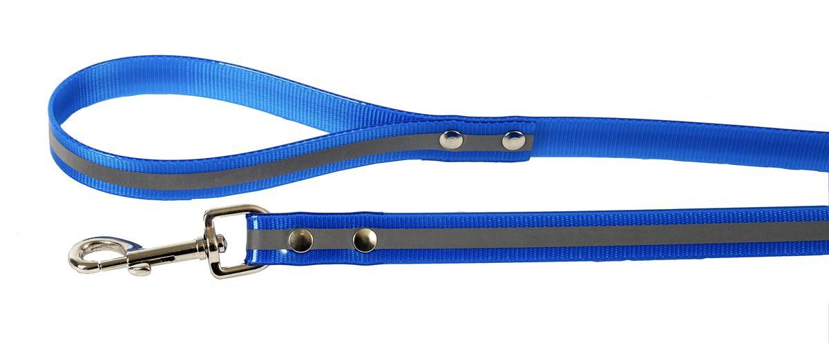 Поводок для собак Каскад Синтетик, со светоотражающей полосой, цвет: синий, ширина 2 см, длина 2 м02620202-06Поводок для собак Каскад Синтетик изготовлен из высокотехнологичного биотана (нейлон, термопластичный полиуретан) и снабжен металлическим карабином. Изделие имеет светоотражающую полоску. Поводок отличается не только исключительной надежностью и удобством, но и ярким дизайном. Он идеально подойдет для активных собак, для прогулок на природе и охоты в темное время суток. Поводок - необходимый аксессуар для собаки. Ведь в опасных ситуациях именно он способен спасти жизнь вашему любимому питомцу. Длина поводка: 2 м. Ширина поводка: 2 см.
