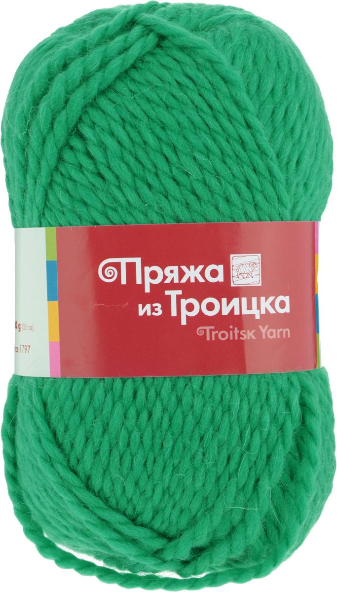Пряжа для вязания Мелодия, цвет: зеленая бирюза (0753), 100 м, 100 г, 10 шт366020_0753Классическая пряжа Мелодия имеет среднюю толщину нити и состоит из 50% шерсти и 50% акрила. Подходит для создания детских вещей на осень. Пуловеры, платья, пледы, шапки и шарфы из этой пряжи отлично держат форму и прекрасно согреют вас в холодную погоду. Благодаря составу и скрутке, петли отлично ложатся одна к другой, вязаное полотно получается ровное и однородное. Пряжа рассчитана на любой уровень мастерства, но особенно понравится начинающим мастерицам - благодаря толстой нити пряжа Мелодия позволяет быстро связать простую вещь. Структура и состав пряжи максимально комфортны для вязания. Состав: 50% акрил, 50% шерсть. Рекомендуемые спицы: 6 мм.
