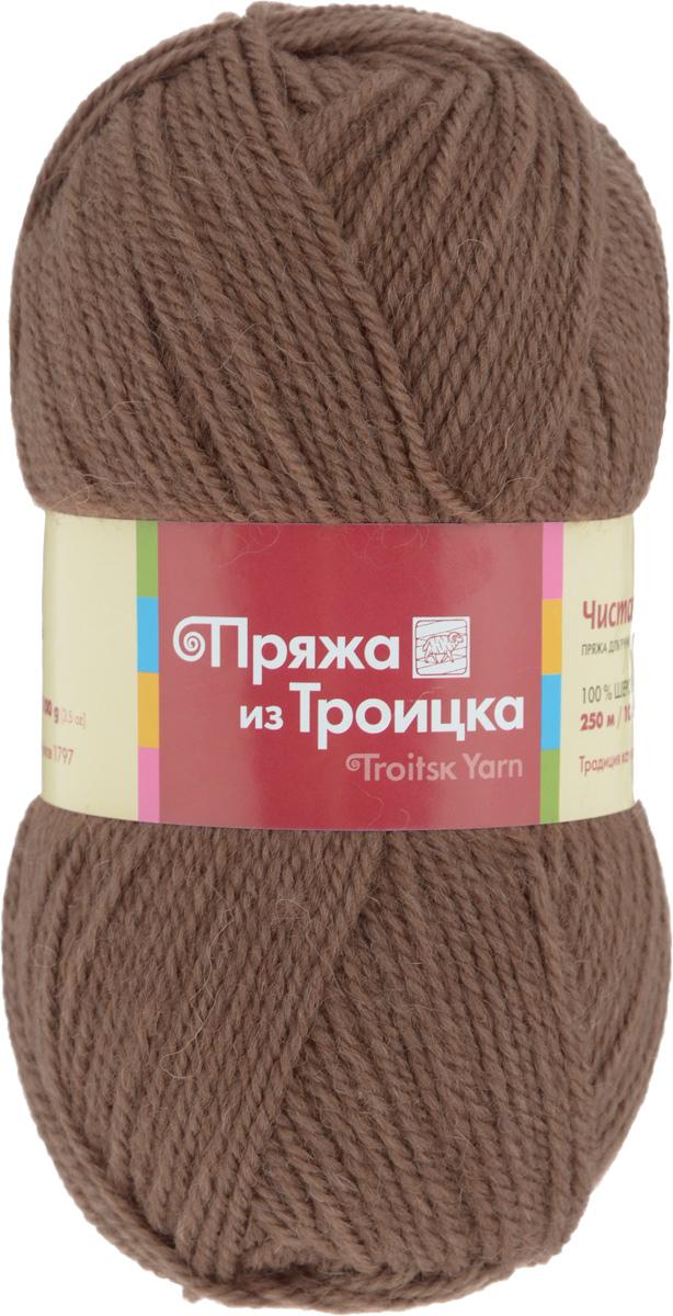 Пряжа для вязания Чистая шерсть, цвет: молочный шоколад (1251), 250 м, 100 г, 10 шт366003_1251Классическая пряжа Чистая шерсть, не очень тугой крутки, представлена богатой палитрой однотонных и секционных расцветок расцветок. Состоит из 100% шерсти, она прекрасно ведет себя в орнаментах и гладких узорах, не скатывается и сохраняет цвет при носке и после стирки. Легко вяжется, экономична, подходит для обладателей самой чувствительной кожи. С такой пряжей процесс вязания превратится в настоящее удовольствие, а готовое изделие подарит уют и комфорт. Состав: 100% шерсть.