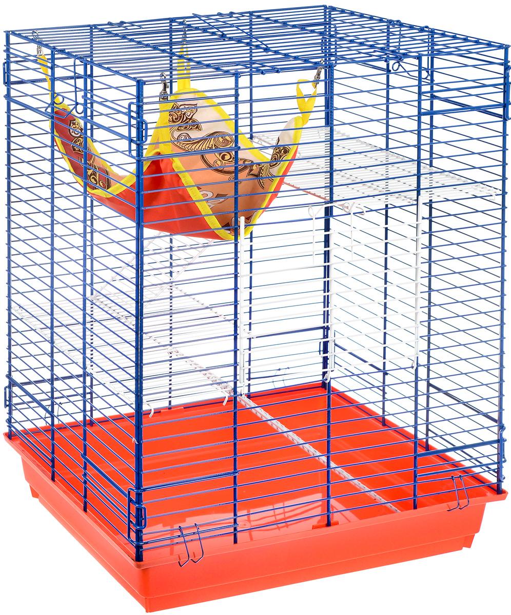 Клетка для шиншилл и хорьков ЗооМарк, цвет: красный поддон, синяя решетка, белые этажи, 59 х 41 х 79 см725жк_красный, синий, белыйКлетка ЗооМарк, выполненная из полипропилена и металла, подходит для шиншилл и хорьков. Большая клетка оборудована длинными лестницами и гамаком. Изделие имеет яркий поддон, удобно в использовании и легко чистится. Сверху имеется ручка для переноски. Такая клетка станет уединенным личным пространством и уютным домиком для грызуна.
