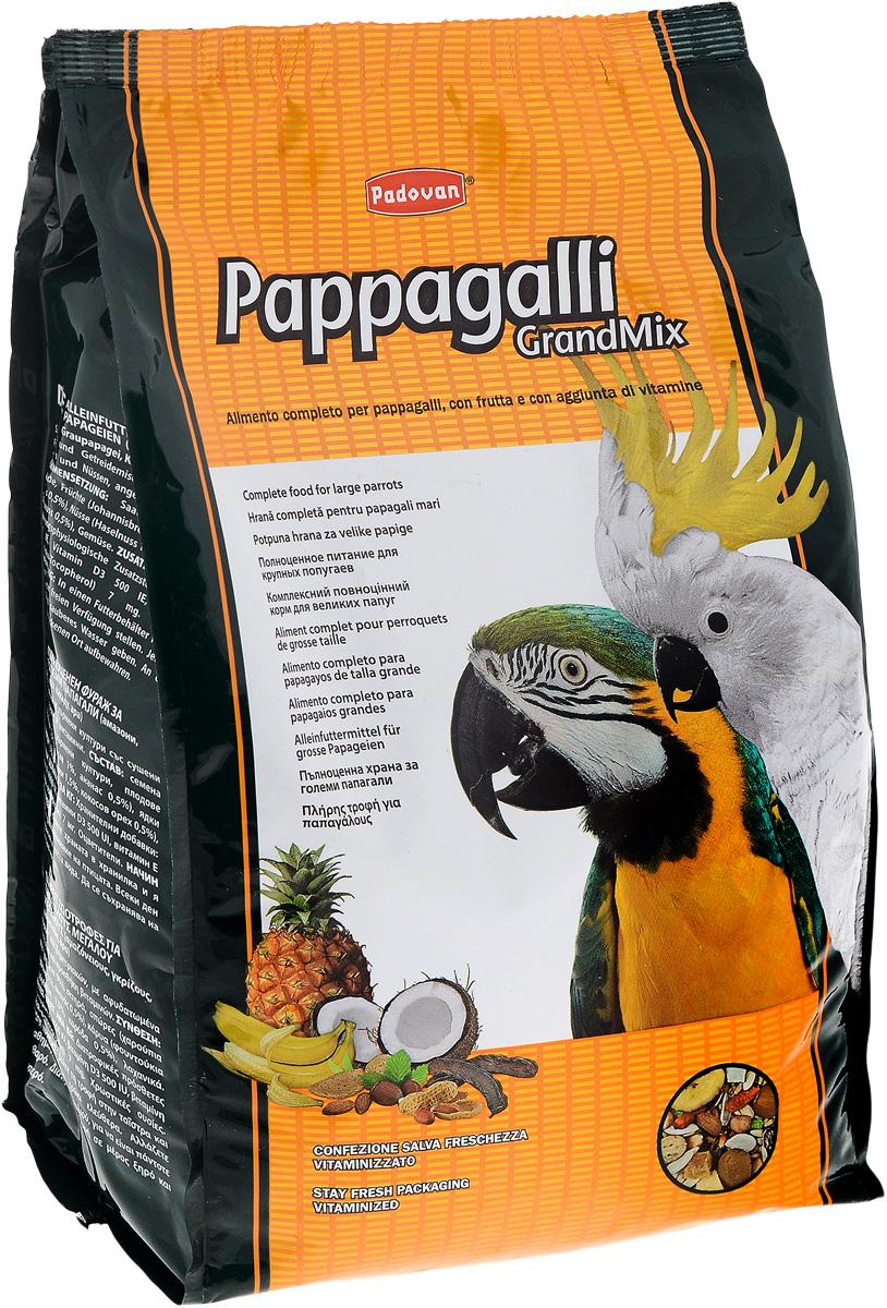 Корм сухой для крупных попугаев Padovan Pappagalli Grandmix, 2 кг16914Padovan Pappagalli Grandmix - комплексный, высококачественный основной корм со смесью зерен и семян с сушеными фруктами, грецкими орехами и витаминными добавками. Корм предназначен для крупных попугаев (амазон, жако, какаду, ара). Товар сертифицирован.