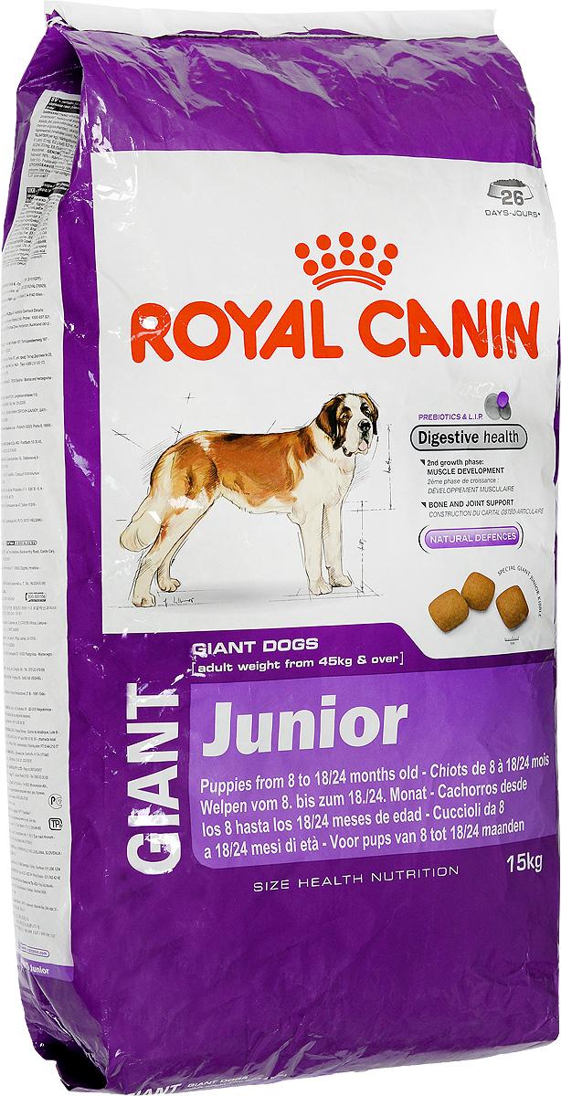 Корм сухой Royal Canin Giant Junior, для щенков собак очень крупных размеров, 15 кг00606Корм сухой Royal Canin Giant Junior - полнорационный сухой корм для щенков собак очень крупных размеров (вес взрослой собаки более 45 кг) в возрасте с 8 до 18/24 месяцев. Максимальная пищевая переносимость. Формула с содержанием высококачественных белков L.I.P, а также пребиотиков - фруктоолигосахаридов и маннановых олигосахаридов оказывает благоприятное воздействие на пищеварительную систему и поддерживает оптимальную консистенцию стула. Вторая фаза роста: развитие мышечной массы. Оптимальное количество белка и L-карнитина обеспечивают набор мышечной массы щенков собак очень крупных размеров во второй фазе роста (с 8 месяцев). Здоровье костей и суставов. Формула с оптимальным уровнем энергии и минералов (кальция и фосфора) способствует поддержанию костей и суставов щенков собак очень крупных размеров в период роста. Естественные механизмы защиты. Способствует поддержанию естественных защитных сил организма щенка благодаря...