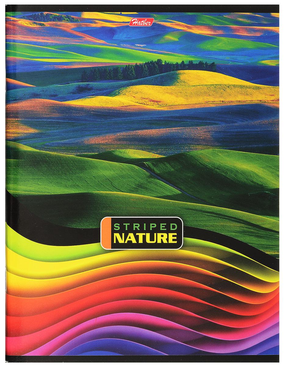 Hatber Тетрадь Полосатый мир 96 листов в линейку цвет мультиколор 96Т5В2_14373
