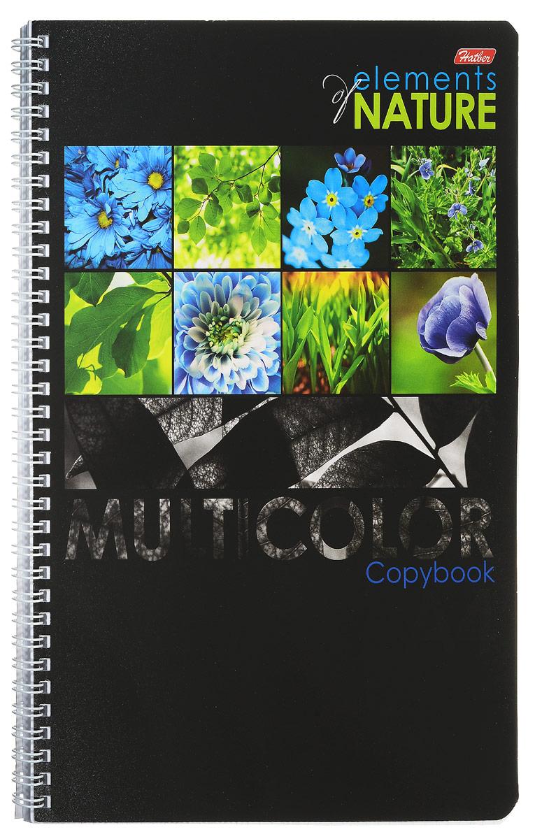 Hatber Тетрадь Multicolor 96 листов в клетку цвет голубой формат А496Т4вмВ1гр_голубыеТетрадь Hatber Multicolor предназначена для объемных записей и незаменима для старшеклассников и студентов. Обложка тетради с закругленными углами выполнена из картона, что позволит сохранить тетрадь в аккуратном состоянии на протяжении всего времени использования. Обложка украшена красочными изображениями растений. Внутренний блок тетради на гребне состоит из 96 листов белой бумаги с линовкой в клетку синего цвета без полей. Все листы блока являются отрывными и снабжены микроперфорацией, а также стандартными отверстиями для подшивки в папки с кольцевым механизмом. Формат тетради А4.