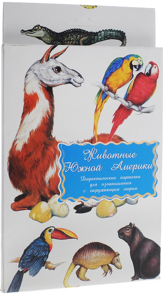 Маленький гений-Пресс Обучающие карточки Животные Южной Америки4607054090757Занятия с обучающими карточками Маленький гений-Пресс Животные Южной Америки помогут вам познакомить ребенка с известными животными, обитающими в Южной Америке: гоацином, ягуаром, обезьяной-ревуном, туканом, шиншиллой, муравьедом, ленивцем, колибри, ламой, обезьяной-игрункой, игуаной, кайманом, капибарой, анакондой, попугаем арой, броненосцем. От 6 месяцев: Показывайте карточки быстро, четко называя нарисованное животное. Комплект показывать несколько дней, затем заменить новым. Через некоторое время повторить показ. От 3 лет: Поиграйте с ребенком: Обсудите с ребенком, чем похожи и чем отличаются животные, как они приспособлены к своей среде обитания и образу жизни. Предложите вспомнить, каких животных данного континента ребенок знает. Подробно опишите любое животное, нарисованное на картинках, не называя его. Предложите ребенку догадаться, о ком идет речь, и подобрать соответствующую карточку. Затем поменяйтесь с...