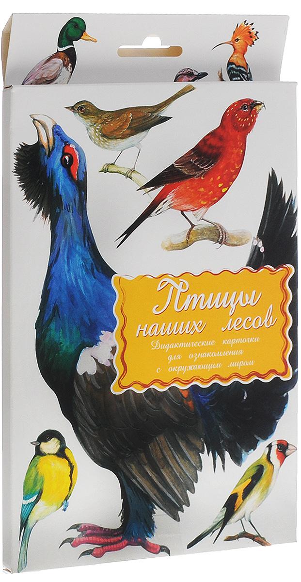 Маленький гений-Пресс Обучающие карточки Птицы наших лесов4607054090511Занятия с обучающими карточками Маленький гений-Пресс Птицы наших лесов помогут вам познакомить ребенка с различными птицами, обитающими в лесах России. От 6 месяцев: Показывайте карточки быстро, четко называя нарисованную птицу. Комплект показывать несколько дней, затем заменить новым. Через некоторое время повторить показ. От 3 лет: Поиграйте с ребенком: Обсудите с ребенком, чем птицы отличаются от других животных, по каким признакам можно их узнать. Подробно опишите любую птицу, нарисованную на картинках, не называя ее. Предложите ребенку догадаться, о ком идет речь, и подобрать соответствующую карточку. Затем поменяйтесь с ребенком местами: он описывает - вы отгадываете. По очереди с ребенком отвечайте на вопрос: Какая? относительно каждой птицы, старайтесь дать побольше ответов; найдите общие и отличительные черты всех птиц, изображенных на карточках. Если ребенок уже учится читать, отрежьте...