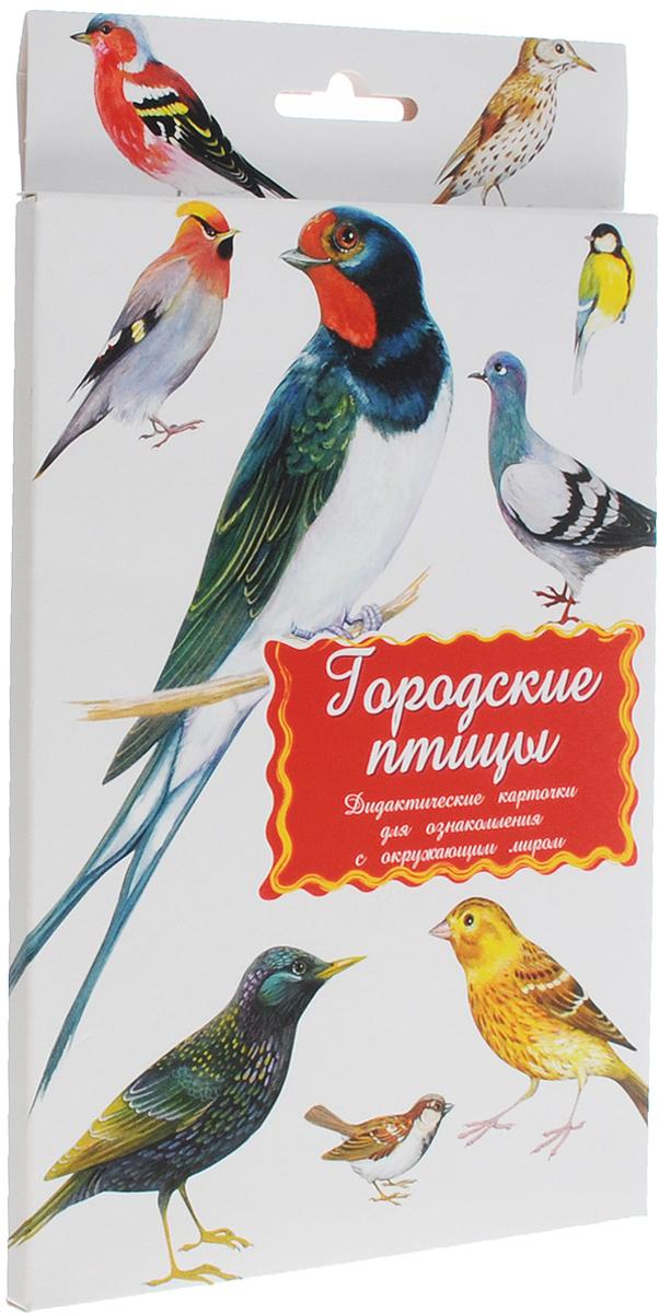 Маленький гений-Пресс Обучающие карточки Городские птицы4607054090788Занятия с обучающими карточками Маленький гений-Пресс Городские птицы помогут вам познакомить ребенка с птицами, живущими в городе рядом с людьми. От 6 месяцев: Показывайте карточки быстро, четко называя нарисованную птицу. Комплект показывать несколько дней, затем заменить новым. Через некоторое время повторить показ. От 3 лет: Поиграйте с ребенком: Обсудите с ребенком, чем птицы отличаются от других животных, по каким признакам можно их узнать. Предложите вспомнить, каких птиц ребенок видел во дворе, в парке, в саду. Подробно опишите любую птицу, нарисованную на картинках, не называя ее. Предложите ребенку догадаться, о ком идет речь, и подобрать соответствующую карточку. Затем поменяйтесь с ребенком местами: он описывает - вы отгадываете. По очереди с ребенком отвечайте на вопрос: Какая? относительно каждой птицы, старайтесь дать побольше ответов; найдите общие и отличительные черты всех птиц,...