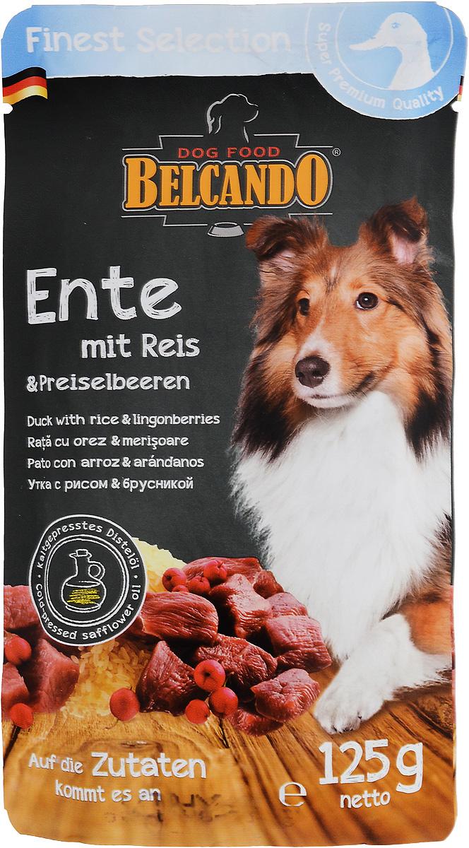 Консервы для собак Belcando, с уткой, рисом и брусникой, 125 г. 4335243352_новый дизайнКонсервы для собак Belcando - это великолепная рецептура в практичной индивидуальной порции. Корм подходит также для собак, склонных к аллергии. Товар сертифицирован.